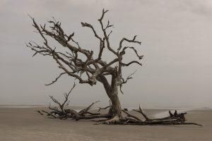 Prevenindo o esgotamento pastoral